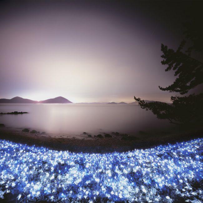 starry sea- #1